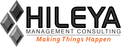 Hileya - Management Consulting